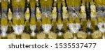 yellow tie dye art. watercolor... | Shutterstock . vector #1535537477