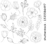 Vector Set Of Flowers....