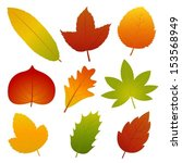 collection of autumn leaves... | Shutterstock .eps vector #153568949
