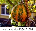 Decorative Orange And Green...