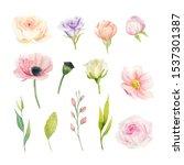 hand drawn watercolor set of... | Shutterstock . vector #1537301387