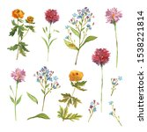 hand drawn watercolor floral... | Shutterstock . vector #1538221814