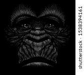 The Vector Logo A Monkey Or...