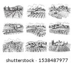 vineyard landscape. farm grape... | Shutterstock .eps vector #1538487977