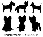 Stock vector small dog silhouettes yorkshire terrier and schnauzer 153870644