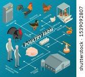 isometric poultry farm...   Shutterstock .eps vector #1539092807