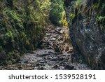 Sucha Bela Hiking Trail In Park ...