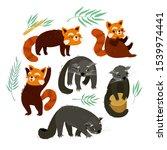 binturong and the red panda.... | Shutterstock .eps vector #1539974441