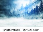 Dark Winter Forest Background...