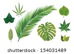 leaves collection | Shutterstock .eps vector #154031489