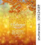 fall background   bokeh... | Shutterstock .eps vector #154124189