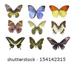 butterfly on white | Shutterstock . vector #154142315