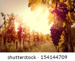Vineyard Sunset - Fine Art prints