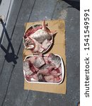 Small photo of Slices of fresh raw fish Corvina (croaker, meager, meagre, jewfish) ready to cook . Morocco .