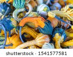 Batch Of Colorful Fall Gourds