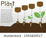 Info Graphic Plant Growth...