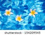 Tropical Frangipani Flower...
