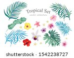 tropical set with fowers and... | Shutterstock .eps vector #1542238727