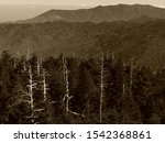 A black and white view from Clingman
