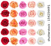 Stock photo collection of beautiful roses isolated on the white background 154254491
