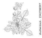 flowers bouquet in black line... | Shutterstock .eps vector #1542788597