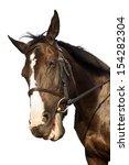 Stock photo horse portrait smiling isolated white background 154282304