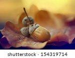 autumn leaves oak acorns | Shutterstock . vector #154319714