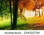 autumn in summer forest  ... | Shutterstock . vector #154332734