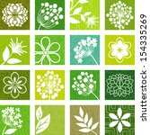 natural icons | Shutterstock .eps vector #154335269