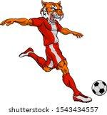 a tiger soccer football player...