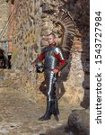 Small photo of Knight in armor of hussar legion with a sword against the background of the ancient walls of a brick castle