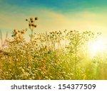 autumnal beauty. abstract... | Shutterstock . vector #154377509