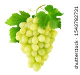 Isolated Grapes. Bunch Of...
