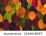 Colorful And Bright Background...