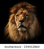 Stock photo lion portrait on black background big adult lion with rich mane 154412864
