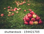 Red Apple Pyramid In Green Grass