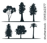 tree silhouettes   madrona ... | Shutterstock .eps vector #1545162377