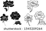 hand drawn topical flower... | Shutterstock .eps vector #1545209264