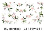 set of floral branch. flower... | Shutterstock .eps vector #1545494954