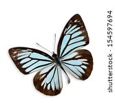 Stock photo beautiful light blue butterfly isolated on white background with soft shadow 154597694