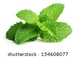 Fresh Raw Mint Leaves Isolated...