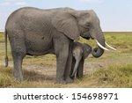 Stock photo mom and baby elephant kenya 154698971