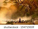 Shepherd Leading A Flock Of...