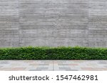 street wall background ... | Shutterstock . vector #1547462981