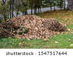 A Large Pile Of Leaves In...