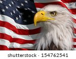 north american bald eagle | Shutterstock . vector #154762541