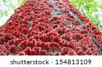 red mushrooms on the bark of a... | Shutterstock . vector #154813109