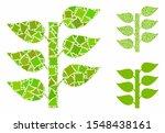 flora plant mosaic of raggy... | Shutterstock .eps vector #1548438161