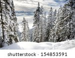 Winter Forest In Alps Near...