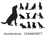 Collection Vectors Of Dogs On...